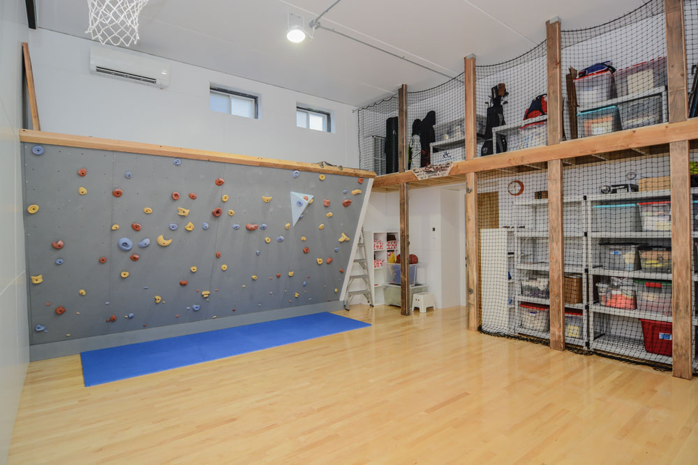 Home Gym climbing wall