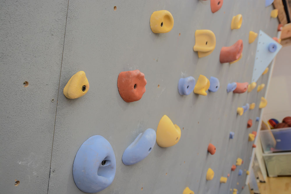 Home Gym climbing wall Details